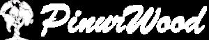 pinur-logo-3-300x58.png